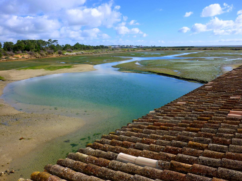 Algarve Sehenswürdigkeiten: Ria Formosa
