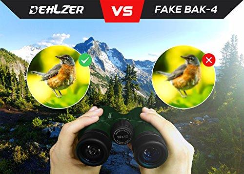 Vogelbeobachtung fernglas optik pro