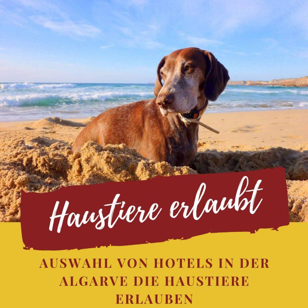 Auswahl von Hotels in der Algarve die Haustiere erlauben