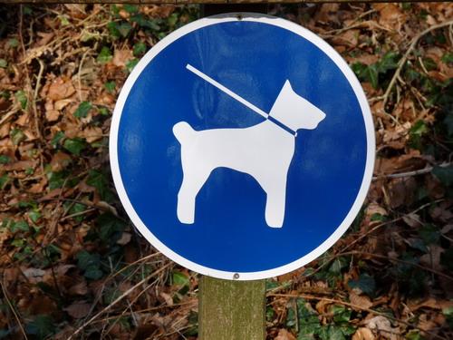 Algarve-Urlaub-Hund Anreise-Einreise