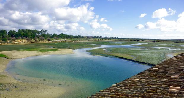 Ferien an der Sand-Algarve, Der Naturpark Ria Formosa, Portugal