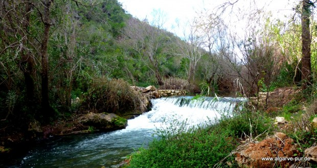 Zur Fonte Benemola - wandern in der Algarve