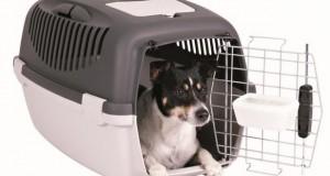 Fliegen mit Hund: Transportbox