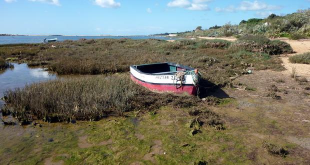 Urlaub an der Sand-Algarve, Der Naturpark Ria Formosa, Portugal